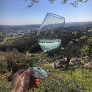 VIni DOCG Friuli Venezia Giulia Ramandolo