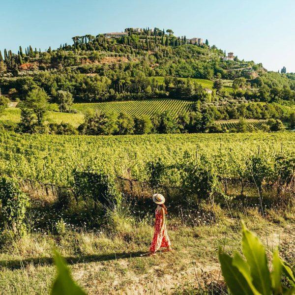 Vini DOCG Abruzzo