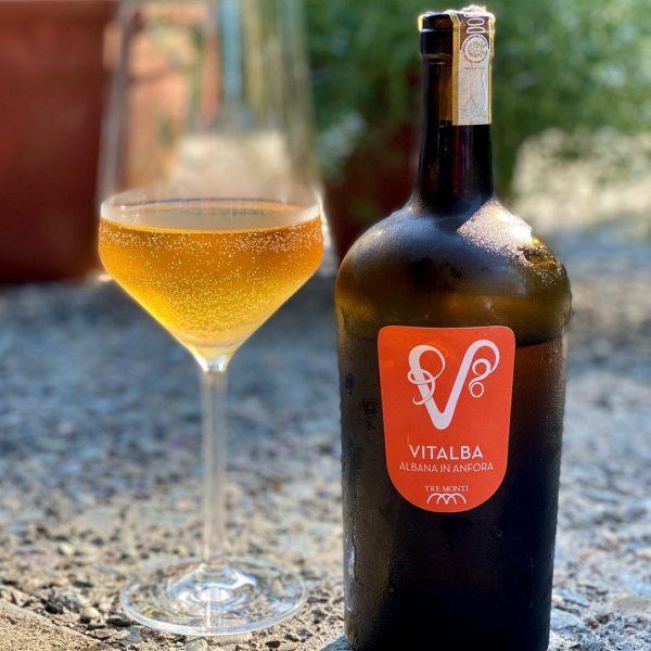 Vini DOCG Emilia Romagna
